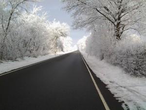 Winter im Eulennest Foto Andreas Köster