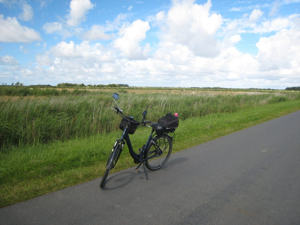 Naturschutzgebiet Föhr