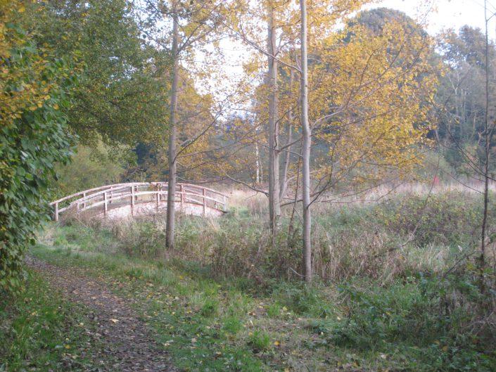 Brücke im Treenetal